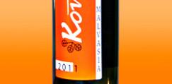 vino_malvasia_2011_piccola